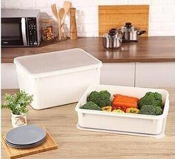 聯府 KEYWAY 零下30度C保鮮盒(18L) 冰箱盒/ / 食材盒 KF-180