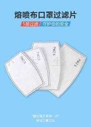 『小本生意』口罩 pm2.5過濾片 成人口罩 兒童口罩 一次性 非醫療用 進口陸製