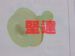 豐田 得利卡 堅達 CANTER 車門內板固定扣 門內板扣 內飾板扣 門板扣 (公加母) 其它扣子歡迎詢問